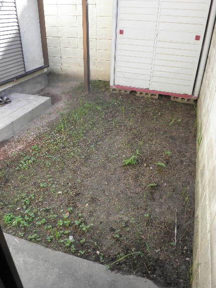 B固まる中庭2