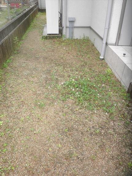 草引き前 左2